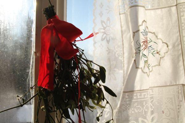 mistel toe on vintage winter window