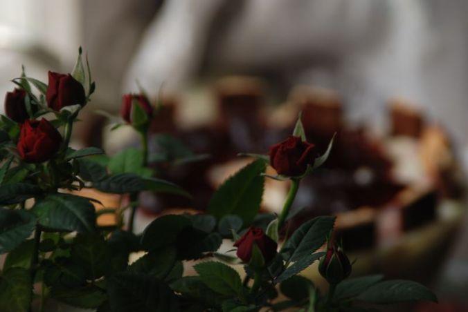Roses and Trifle - Sanne Kurz